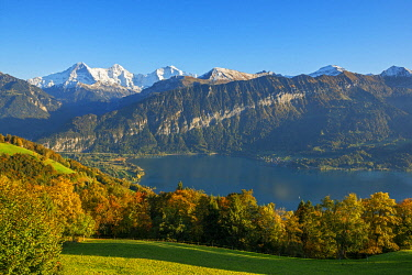 SWI8522AW View from Beatenberg on Lake Thun with Eiger, Monch and Jungfrau, Berner Oberland, Switzerland