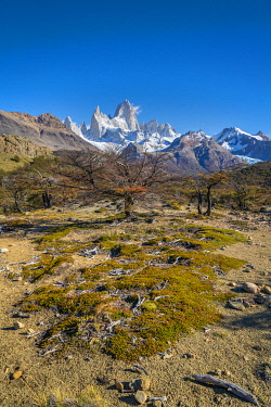 ARG3128AWRF Fitz Roy mountain viewed from trail in autumn, Los Glaciares National Park, El Chalten, Santa Cruz Province, Argentina