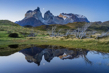 CHI11239AWRF Los Cuernos mountains reflecting in a puddle after sunset, Torres del Paine National Park, Magallanes Region, Chile