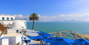 TU02362 Tunisia, Sidi Bou Said, Cafe des Delices, also called Cafe Sidi Chabaane