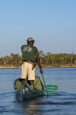 ZIM2769 Mana Pools, Zimbabwe, Africa.  A canoeing guide leads a safari on the Lower Zambesi River scanning for pods of hippos