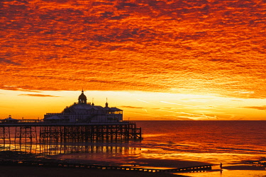 TPX72441 England, East Sussex, Eastbourne, Eastbourne Beach and Pier with English Channel at Dawn