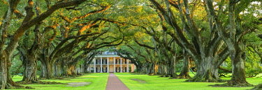 USA14759AW USA, Deep South, Louisiana, Great river Road, Oak Alley Plantation, National Historic Landmark