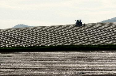IBLBEJ01644451 Tractor in a field, Region Auvergne, France, Europe