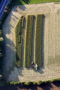 IBLBLO01722552 Aerial view, B63, Ossenbeck, corn harvest, Claas, tractor, combine harvester, north of Kreisstrasse road, Drensteinfurt, Ruhr Area, North Rhine-Westphalia, Germany, Europe