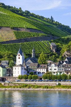 IBLRUN04212543 Kaub, Mittelrhein oder Middle Rhine region, Germany, Europe