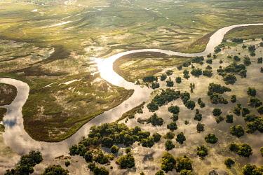 IBXFLW05037051 Aerial view, Swamp area, Okavango Delta, Botswana, Africa