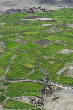IBLOMK02241658 Barley and pea cultivation, fields and plots with irrigation channels, Tongde, near Padum, Zanskar, Ladakh, Jammu and Kashmir, North India, India, Asia