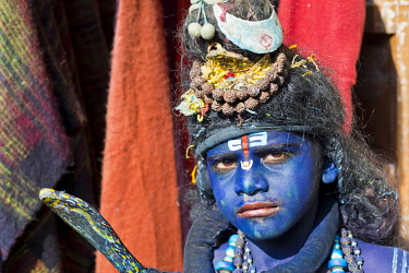 IBLWGB03222076 Indian boy, about 11 years, transformed with blue makeup into the Hindu God Shiva at a Hindu festival, Pushkar, Rajasthan, India, Asia