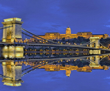 IBXRFI05046839 Chain bridge in front of castle palace with reflection in the Danube, illuminated, dusk, Budapest, Hungary, Europe