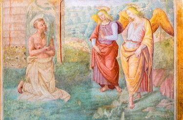 IBLJUN05044649 St. Francis throws himself into a rose bush, fresco by Tiberio d'Assisi, 1512, Renaissance, Capella delle Rose, Convent San Fortunato, Montefalco, Province Perugia, Umbria, Italy, Europe