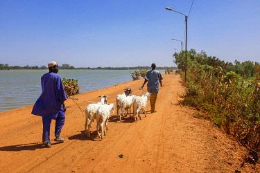 HMS3238503 Burkina Faso, Centre region, Ouagadougou, lake of dam number 3