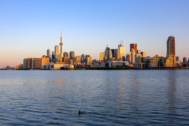 HMS3333396 Canada, Province of Ontario, City of Toronto, City and its Sunrise Skyscrapers from the Lake Ontario Shoreline