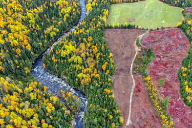 HMS3407839 Canada, province of Quebec, the Charlevoix region seen from the sky, river and field of blueberries turning red in autumn (aerial view)