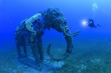 HMS3339152 Egypt, Red Sea, Dahab