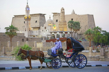 HMS3640557 Egypt, Upper Egypt, Nile Valley, Luxor, turbaned man drinking tea on his horse carriage parked in front of Luxor Temple and Abu Haggag Mosque