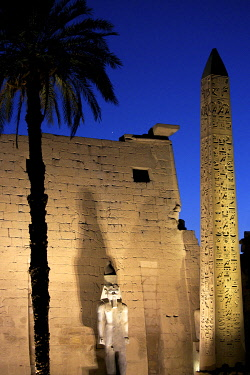 HMS3640641 Egypt, Upper Egypt, Nile Valley, Luxor, facade of the Luxor Temple with its statue of Ramses II, its obelisk and its slender palm tree lit by night