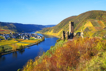 GER12024AW Castle ruin Metternich, Beilstein, Mosel valley, Rhineland-Palatinate, Germany