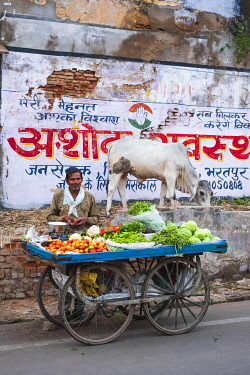 HMS3421307 India, Rajasthan, Bharatpur, street vendor in the old city