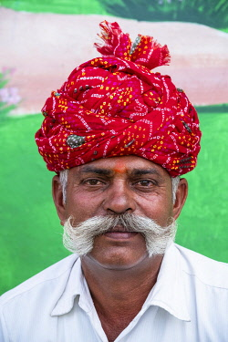 HMS3421628 India, Rajasthan, Jhalrapatan, Chandrabhaga mela, livestock fair and cultural events, mustache contest