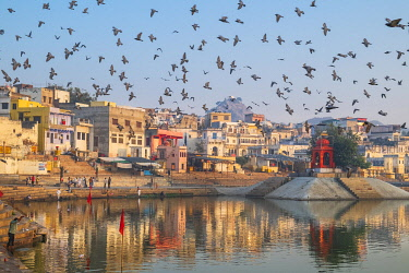 HMS3429366 India, Rajasthan, Pushkar, holy city for Hindus, holy lake surrounded by 52 bathing ghats
