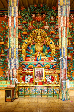 HMS3430903 India, state of Jammu and Kashmir, Himalaya, Ladakh, Indus valley, Matho monastery (gompa), Buddha Maitreya statue with shelter tree inside Dukang Nyingpa (ancient hall of worship)
