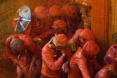 HMS3530289 India, Uttar Pradesh, Holi festival, Colour and spring festival celebrating the love between Krishna and Radha.