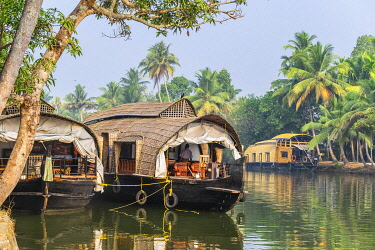 HMS3348326 India, state of Kerala, Kumarakom, village set in the backdrop of the Vembanad Lake, cruise on the backwaters (lagoons and channels networks) with a kettuvallam (traditional house boat)