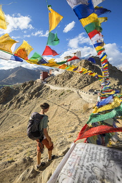 HMS3405787 India, Jammu and Kashmir State, Himalaya, Ladakh, Indus valley, Leh (3500m), régional capital, buddhist monastery of Namgyal Tsemo and prayer flags
