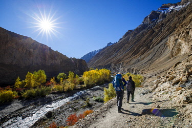 HMS3422478 India, state of Jammu and Kashmir, Himalaya, Ladakh, Hemis National Park, trekking from Chilling to Chogdo in the Markha valley