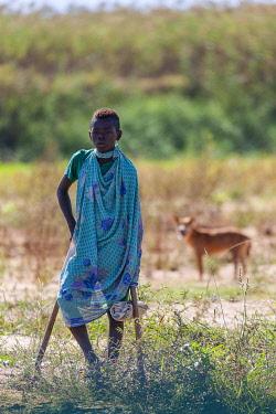 HMS3227199 Madagascar, region of Menabe, massif of Bemaraha, young shepherd keeping a flock on the banks of the river Tsiribihina