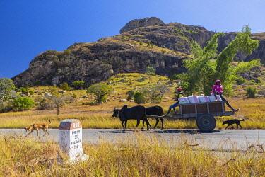 HMS3299757 Madagascar, Ihorombe region, the National Highway 7, a zebu cart