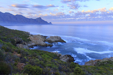 HMS3239294 South Africa, Western Cape, Ocean Coast at the foot of the Kogelberg Massif at sunrise