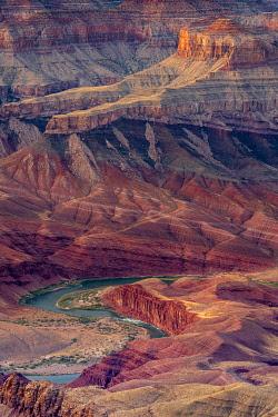 USA14985AW Colorado river flowing through Grand Canyon at sunset, Lipan Point, Grand Canyon National Park, Arizona, USA
