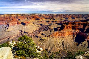 USA14989AW Idyllic shot of Grand Canyon along Hermit Road, Grand Canyon National Park, Arizona, USA
