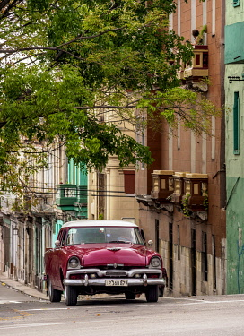 CUB1669AWRF Vintage car at Neptuno Street, Centro Habana, Havana, La Habana Province, Cuba