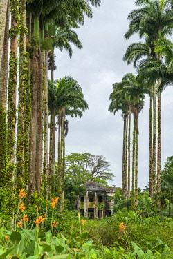 SAO1207AW Africa, S�A?o Tomè and Principe. Abandoned farm house near to Praia Pesqueria.