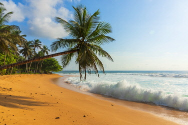 SAO1210AW Africa, S�A?o Tomè and Principe. Beautiful sandy beach Praia Jalè in the South of Sao Tomè Island.