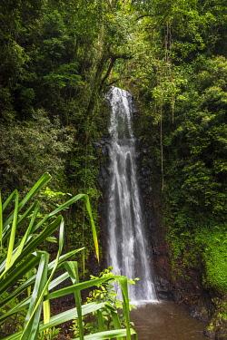 SAO1224AW Africa, S�A?o Tomè and Principe. Famous waterfall cascata Sao Nicolau in Sao Tomè island.
