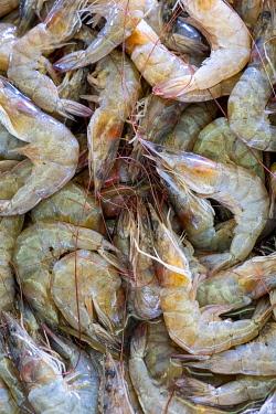 ELS0027AW Americas, Central America, El Salvador, seafood for sale in a Pacific coast market