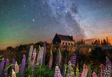 NZ9787AW Night view of the Church of the Good Shepherd by Tekapo Lake with lupins in bloom and the milky way