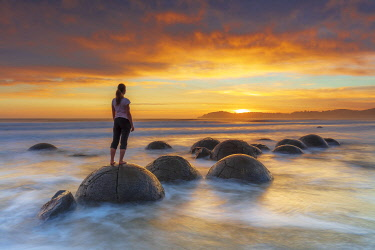 NZ9836AW Moeraki Boulders rock formations by the sea at sunrise, Otago, New Zealand