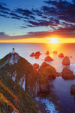NZ9872AW Elevated view of Nugget Point lighthouse in the Catlins national park at sunrise