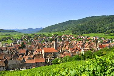 HMS3587564 France, Haut Rhin, Alsace Wine Road, Riquewihr village, labelled Les Plus Beaux Villages de France (The Most Beautiful Villages of France) and the vineyard