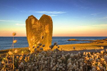 HMS3652614 France, Morbihan, pointe de Beg er Goalennec, Menhir in the shape of heart, village of Manemeur
