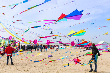 France, Pas de Calais, Opale Coast, Berck sur Mer, Berck sur Mer International Kite Meetings, during 9 days the city welcomes 500 kites from all over the world for one of the most important kite event...