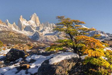 CLKFV118119 Fitz Roy range peaks in autumnal landscape. El Chalten, Santa Cruz province, Argentina.