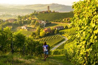 CLKGF116569 Girl walking trough the vineyards in Langhe, Barbaresco, Italy
