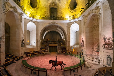 HMS3574115 France, Oise, Chantilly, Chantilly Castle, the Great Stables, show of the Tercentenary of the Great Stables: Once upon a time...the Great Stables, Sophie Bienaim��, relaxes his horse in the theat...