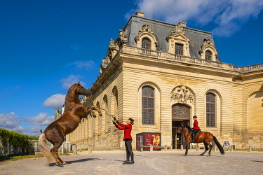 HMS3583257 France, Oise, Chantilly, the castle of Chantilly, the Grandes Ecuries, in front of the entry Clara makes up his horse.